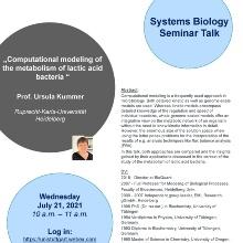 Announcement of the talk of Prof. Ursula Kummer, Ruprecht-Karls Universität Heidelberg
