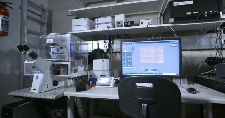 Zeiss Cell Observer Z1